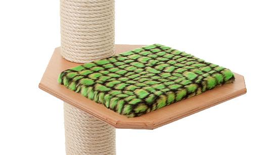 Holzfarbe: Buche - Auflage: Alligator