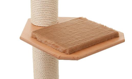 Holzfarbe: Buche - Auflage: Camel