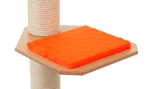 Holzfarbe: Buche - Auflage: Knallorange