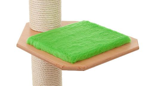 Holzfarbe: Buche - Auflage: Limette