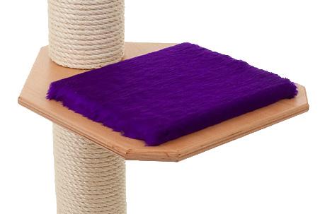 Holzfarbe: Buche - Auflage: Royalviolett