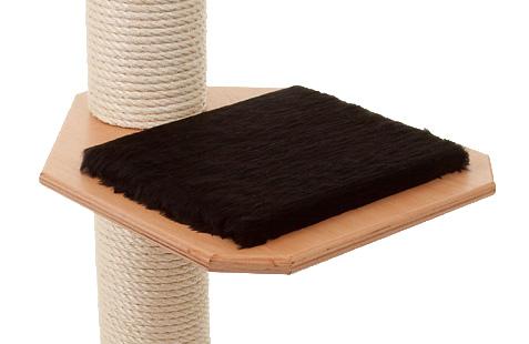 Holzfarbe: Buche - Auflage: Schwarz