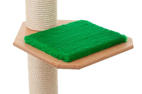 Holzfarbe: Buche - Auflage: Tannengrün