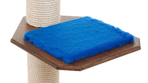 Holzfarbe: Dunkelnuss - Auflage: Royalblau